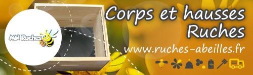 Corps et hausses