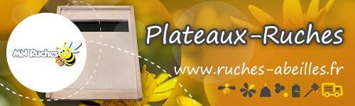 Plateaux ruches